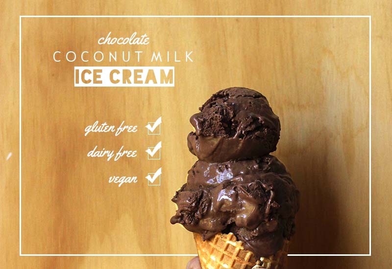 Chocolate Coconut Milk Ice Cream   The Sugar Hit