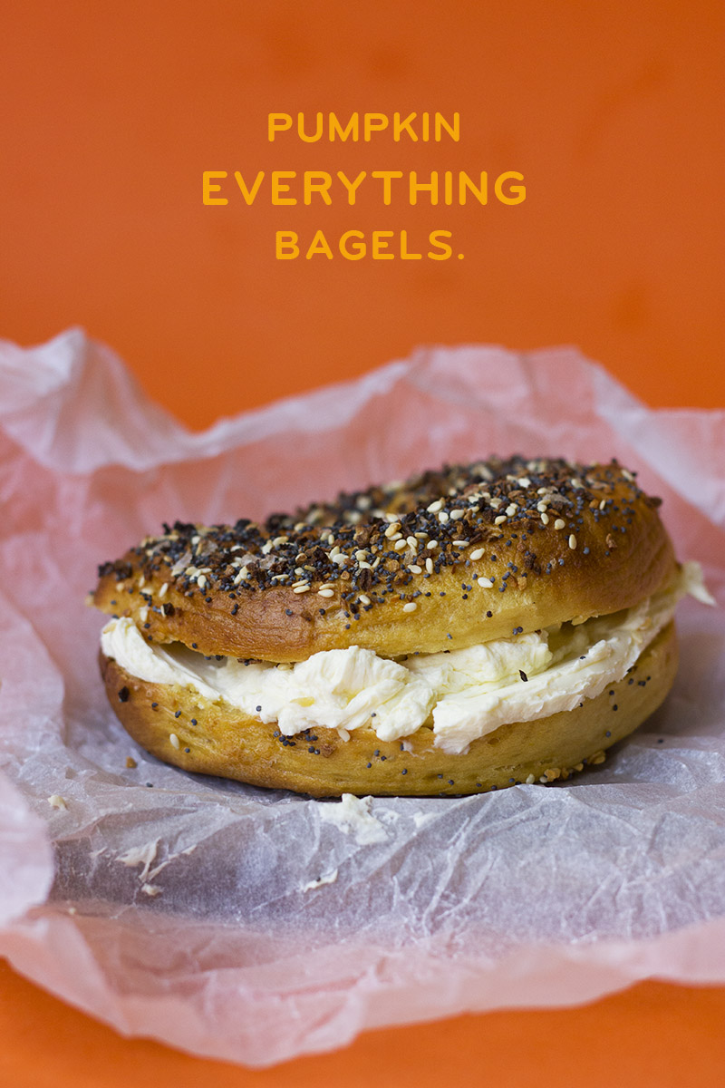 Pumpkin Everything Bagels // The Sugar Hit