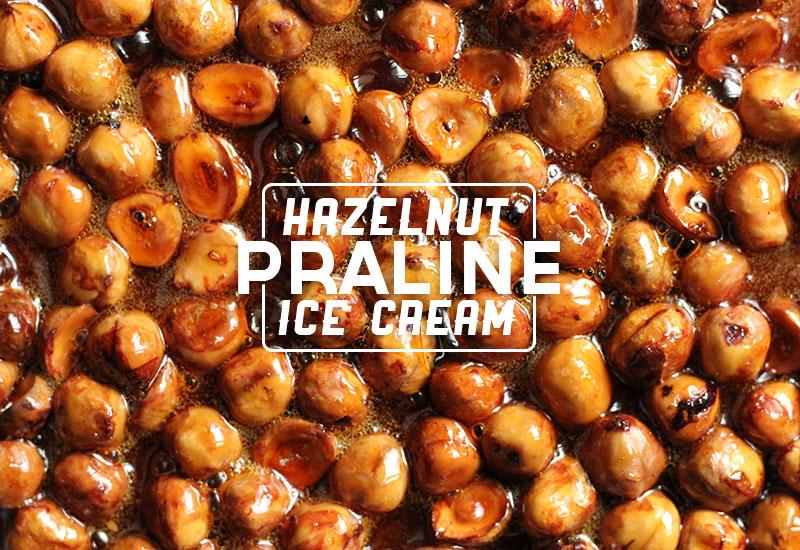 Hazelnut Praline Ice Cream | The Sugar Hit!