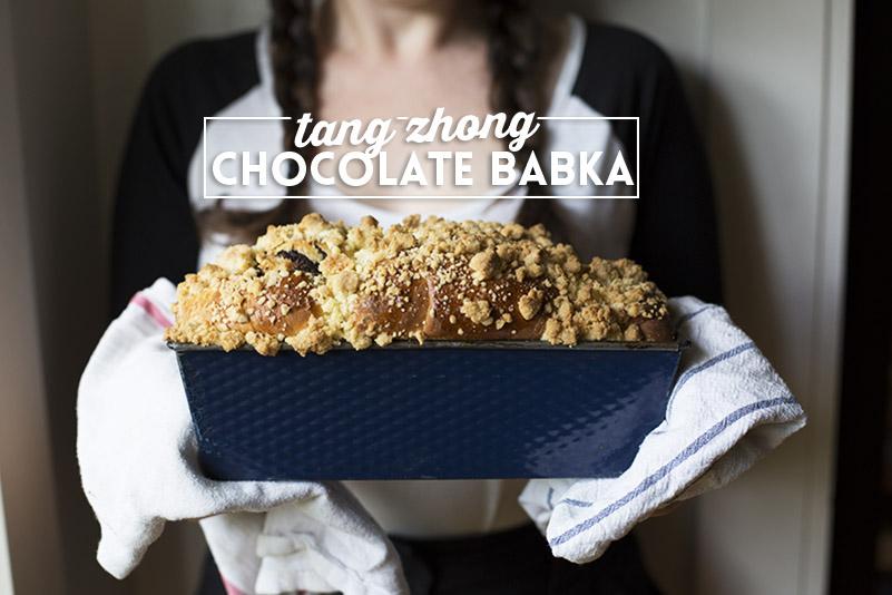 Tang Zhong Chocolate Babka // The Sugar Hit